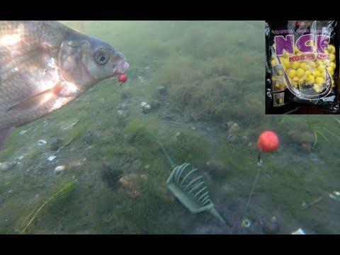 все о аттрактантах для рыбной ловли