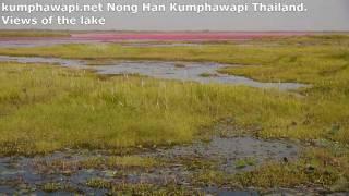 Kumphawapi Thailand  city photo : Nong Han Kumphawapi Views of Lake Thailand