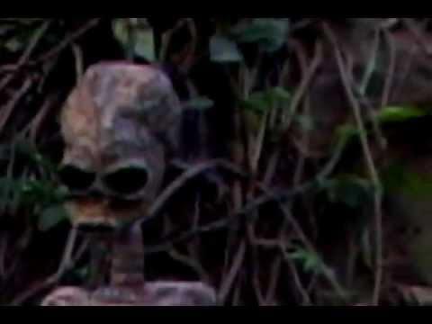 Alien Caught on tape July 4th 201 UFO sightings