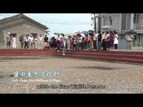 【Taijiang】Taijiang:Vibrant Wetland Sanctuary(3mins ver.)