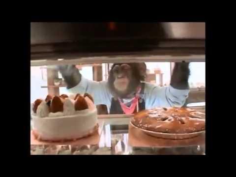 Chú Khỉ Thông Minh Phiêu Lưu Ký 18
