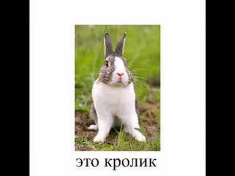 روسي نيك