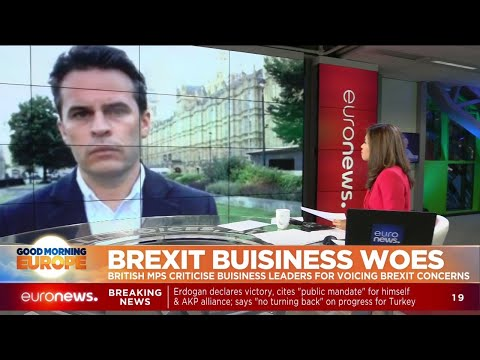 Brexit Business Woes: British MPs criticise business leaders for voicing Brexit concerns