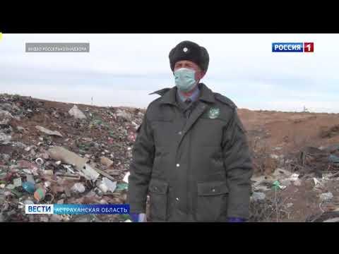 В Астраханской области Управлением Россельхознадзора выявлено захламление твердыми коммунальными отходами земель сельскохозяйственного назначения