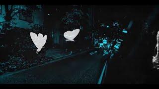 הזמר רועי סנדלר - פרפרים של אהבה