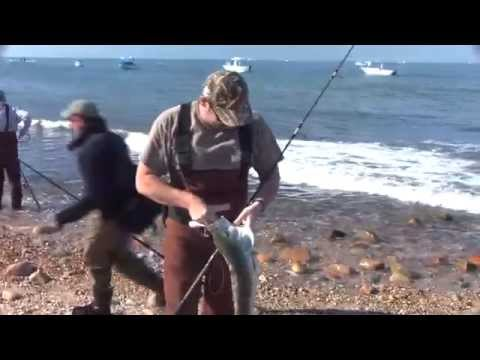 Montauk Surf Striper Blitzes – Fall 2011