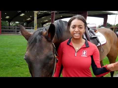 Stanford Rec Profiles: Corinne Miller