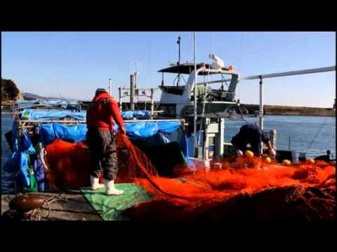 Taiji dolphin killers load nets onto the gutting barge for an offshore capture