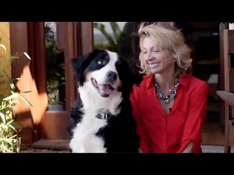 BLUEFANG – SMART PHONE DOG TRAINER