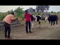 Marathi Funny Video (Gavthi FUN) - SUBSCRIBE for Interesting Videos.