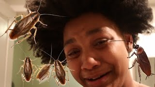 EXTREME COCKROACH PRANK!!! She starts crying!!!!