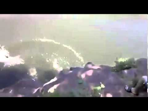 Doloroso Fail! Salto al río desde un árbol
