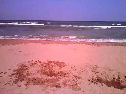 Пляжи поселка Кучугуры