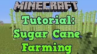 Minecraft PS3 + PS4: Sugar Cane Farm Tutorial (Farming Tutorial 1/10)