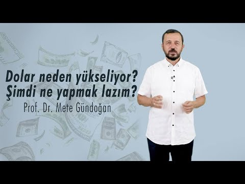 Prof. Dr. Mete GÜNDOĞAN: Dolar Neden Yükseliyor? Şimdi Ne Yapmak Lazım?