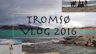 Tromso Norway  city photos : Vlog #3: Vacation above the Arctic Circle ..? [Tromsø, Norway]