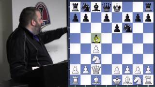 Chess for Beginners with GM Ben Finegold (Larson vs. Finegold | FAQ | Saint Louis) - 2014.02.02
