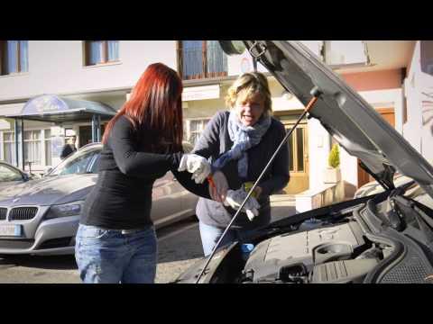 1. Platz Small Enterprises - Fahrschule Steiner