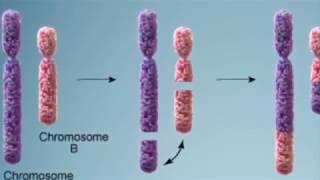 UNAM crea método de diagnóstico oportuno del cáncer
