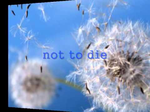 Tekst piosenki Ronan Keating - Blown Away po polsku