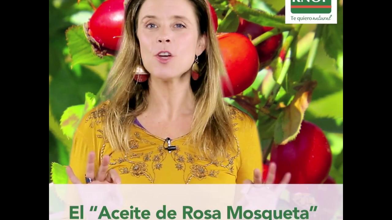 Farmacias Knop – Rosa mosqueta