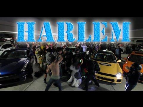 0 10 meilleures parodies du Harlem Shake