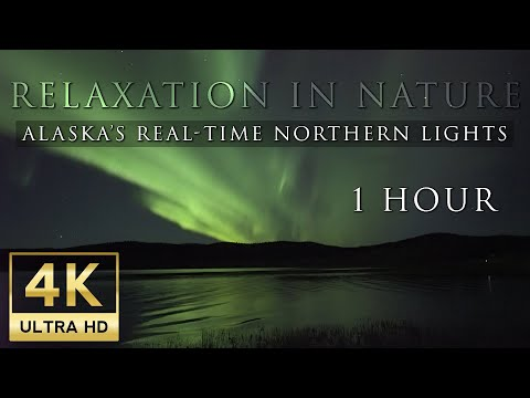 Relaxing Nature: Alaska's Real-Time Northern Lights in 4K UHD - 1 Hour