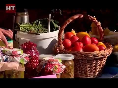 В Великом Новгороде прошла ярмарка сельскохозяйственной продукции
