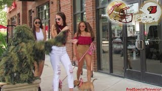 Video BUSHMAN PRANK AT FLORIDA STATE UNIVERSITY VS LOUISVILLE CARDINALS MP3, 3GP, MP4, WEBM, AVI, FLV November 2017