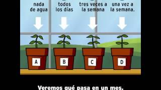 Método Científico  BrainPOP Español
