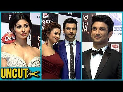 Big Zee Entertainment Awards 2017 Full Event HD Un