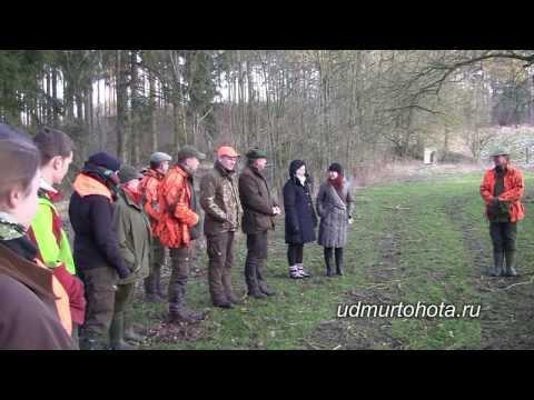 Охота в Германии
