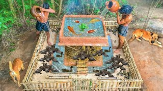 Video Primitive Technology: Build Mini Swimming Pool With Bamboo House For Ducks And Fish Pool MP3, 3GP, MP4, WEBM, AVI, FLV Januari 2019