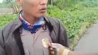 Video Polisi gadungan polres sorong aimas MP3, 3GP, MP4, WEBM, AVI, FLV Juni 2018