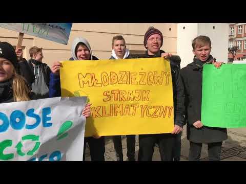 Wideo1: Protest klimatyczny w Lesznie