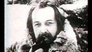 Greenhorns - Bilej snih