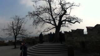 preview picture of video '世界ふれあい食べ歩き~プラハ編~ travel movie Cestovateľ v Prahe'