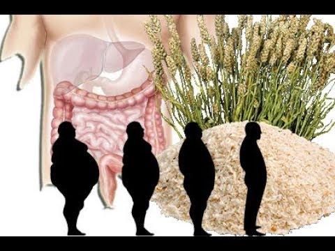 Flohsamenschalen 2 Kg in 1 Woche durch diese Wirkungen möglich