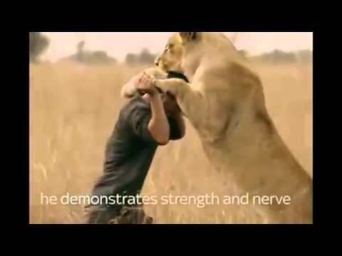 Big Cats An Amazing Animal - Daredevil Man