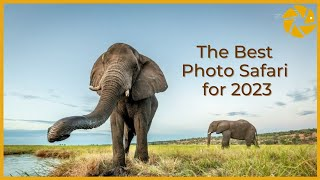 Is this the best value PHOTO SAFARI In AFRICA for 2021?