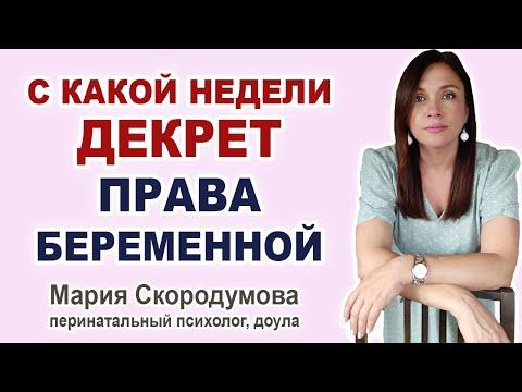 Когда можно уйти в декрет? Какие права у беременной на работе?
