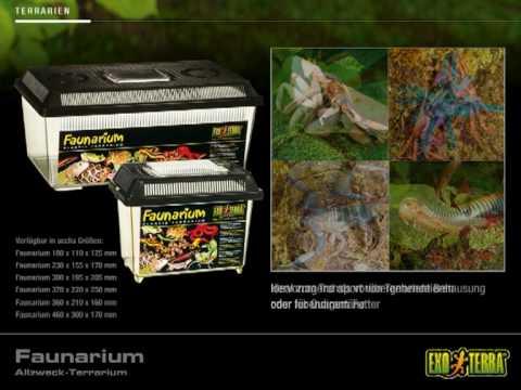 EXO TERRA Faunarium - Allzweck-Terrarium