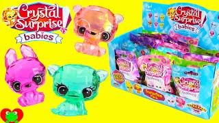 Crystal Surprise Babies Blind Bags Full Case Opening Toy Genie Surprises