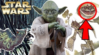 What Else Lived On Dagobah? - Star Wars Explained