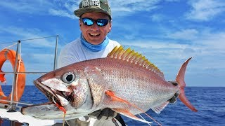 Рыбалка на сейшелах с берега
