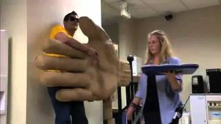 Jackass The High Five