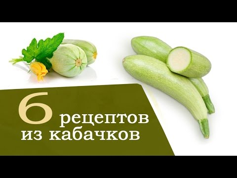 Кабачки рецепты. 6 быстрых рецептов из кабачков   с Анастасией Флэшкой