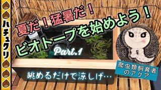 ビオトープ#1猛暑に冷涼!年に1回水換え放置!究極のベランダビオトープバクチャーBiotopeAquqriumBalconyJapanesefish爬虫類飼育者のアクアリウムメダカ