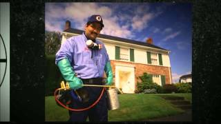 preview picture of video 'New York Pest Control Rochester   Call 646-783-4832 Now!'