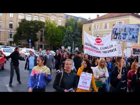 Protest anti eutanasiere la Cluj 14.09.2013